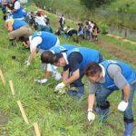 全商協、福島・相馬市で植樹祭に参加