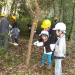 日遊協が「子ども自然塾」、間伐体験など実施