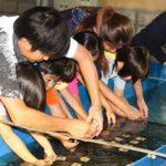 回胴遊商九州・沖縄支部がサンゴ保全活動
