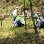 回胴遊商近畿支部、森づくりに向け保全活動