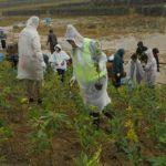 全商協所属の5地区遊商が植樹祭に参加