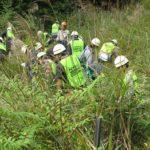 回胴遊商がやどりき水源林内の下草刈りを実施