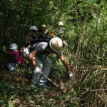 回胴遊商、下草刈りで環境保全への理解深める