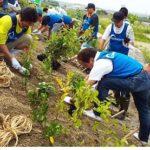 全商協、「千年希望の丘植樹祭2018」に参加