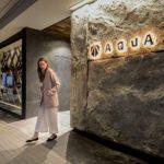 月島のパチンコ店《AQUA》が海外建築賞受賞