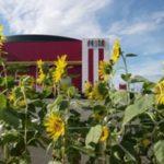 テンガイが「ひまわり」で福島県の復興を支援