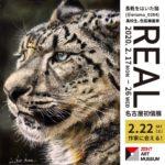 色鉛筆画展「REAL」にリニューアル/善都「ZENT ART MUSEUM」